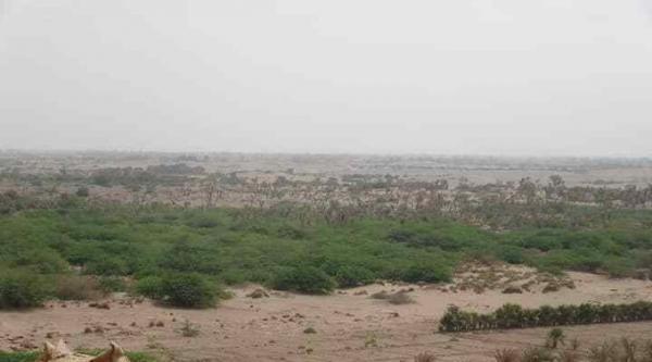 مواقع للمشتركة في التحيتا وحيس تتعرض لقصف حوثي من أسلحة ثقيلة ومتوسطة