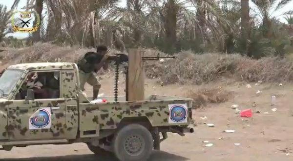 «فيديو»..تطهير مزارع جنوب الحديدة بعد ساعات من تمركز المليشيات الحوثية فيها