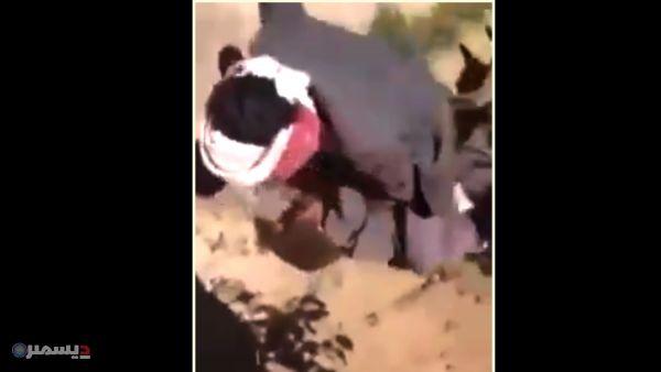 فيديو صادم... حوثيان يعذبان طفلًا بوحشية داخل مزرعة بصنعاء ويوثقان الجريمة